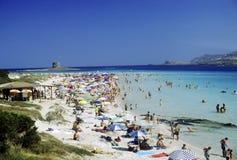 Het strand van La Pelosa - Sardinige Royalty-vrije Stock Foto