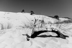 Het strand van Le Dune, Porto Pino, Sardinige, Italië Stock Foto