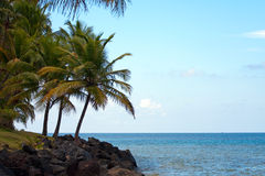 Het Strand van Luquillo in Puerto Rico Royalty-vrije Stock Fotografie