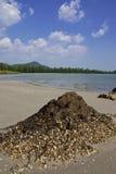 Het strand van MAI van Chao, Trang provincie, Thailand. Stock Afbeelding