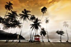 Het Strand van Maracas - de Hut van de Badmeester Royalty-vrije Stock Foto