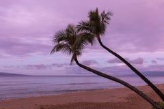 Het Strand van Maui bij Zonsopgang Stock Foto