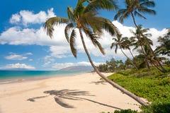 Het strand van Maui Hawaï Stock Fotografie