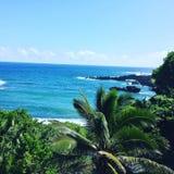 Het Strand van Maui overziet Stock Foto