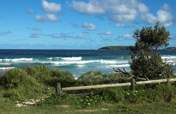 Het Strand van McCauleys in Australië royalty-vrije stock foto's