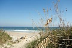 Het strand van Noord-Carolina met Overzeese Havervoorgrond stock afbeeldingen