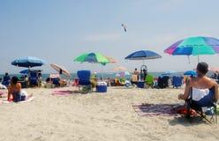 Het strand van oerwoudnew jersey Royalty-vrije Stock Foto