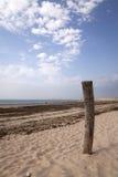 Het strand van Oléron Royalty-vrije Stock Foto's