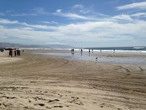 Het strand van Oregon Stock Foto's