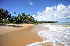 Het strand van Padadise Stock Afbeeldingen