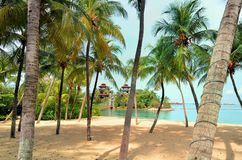 Het Strand van Palawan van de brugaaneenschakeling aan het Meest zuidelijke Punt van Continentaal Azië royalty-vrije stock afbeeldingen