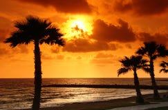 Het strand van Paphos Stock Foto