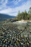 Het strand van Pebbled met blauwe hemelen Royalty-vrije Stock Afbeelding