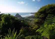 Het strand van Piha stock afbeelding