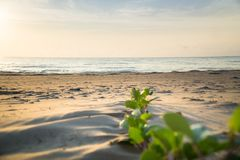 Het strand van Prachuap Khiri Khan, Ao Manao Bay, Unseen Thailand royalty-vrije stock foto's
