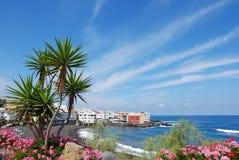 Het strand van Puerto cruz royalty-vrije stock foto's