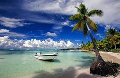 Het strand van Saona Stock Afbeeldingen