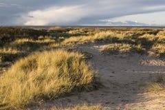 Het strand van Sibirien in Angelholm Zweden Stock Fotografie