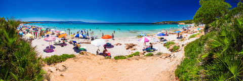 Het strand van Spiaggia delle Bombarde dichtbij Alghero, Sardinige, Italië stock foto's