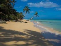Het strand van Tropica Stock Fotografie