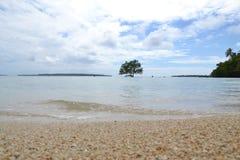 Het strand van Vanuatu Royalty-vrije Stock Fotografie