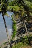 Het strand van Varkala, Kerala, India royalty-vrije stock foto's