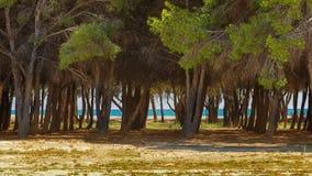 Het strand van Vera, Almeria Stock Afbeeldingen