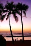 Het strand van Waikiki. Honolulu, Oahu. Hawaï. Royalty-vrije Stock Foto