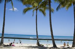 Het Strand van Wakiki Royalty-vrije Stock Foto's