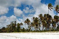 Het strand van Zanzibar royalty-vrije stock fotografie