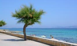 Het strand van zoonsbaulo Stock Foto