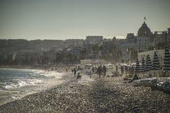 Het strandleven Royalty-vrije Stock Afbeeldingen