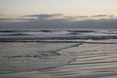 Het strandleven in San Diego stock fotografie