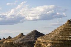 Het strandparaplu van het stro Royalty-vrije Stock Foto