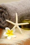 Het strandtoevlucht van de massage Royalty-vrije Stock Afbeeldingen