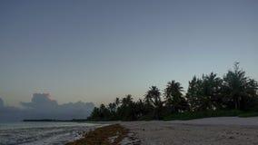 Het Strandzonsondergang van Puntacana stock footage