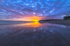 Het Strandzonsopgang van de wikke Royalty-vrije Stock Afbeelding