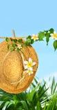 Het strohoed van de zomer met frangipanibloemen stock afbeeldingen