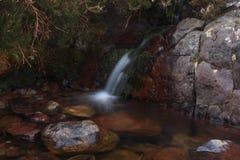 Het stromen Rocky Stream Stock Afbeeldingen