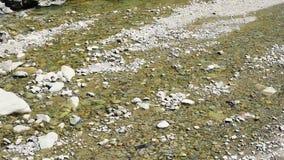 Het stromende water op het strand stock footage