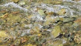 Het stromende water op het strand stock video