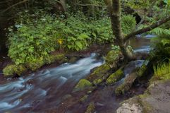 Het stromende water werd melkachtig wit door een lange blootstelling aangezien het rond groene en bruine bemoste rotsen stroomt royalty-vrije stock foto