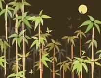 Het struikgewas van het bamboe Royalty-vrije Stock Fotografie