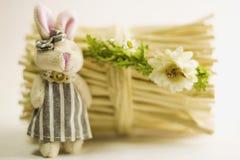 Het stuk speelgoed dragen en de konijntjeszitting naast een bundel van kreupelhout Stock Afbeeldingen
