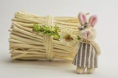 Het stuk speelgoed dragen en de konijntjeszitting naast een bundel van kreupelhout Royalty-vrije Stock Afbeelding