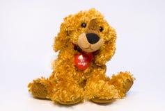 Het stuk speelgoed van de hond stock afbeeldingen
