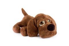 Het stuk speelgoed van het puppy Royalty-vrije Stock Afbeeldingen
