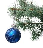 Het stuk speelgoed van Kerstmis op een tak van een bont-boom Royalty-vrije Stock Foto