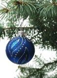 Het stuk speelgoed van Kerstmis op een tak van een bont-boom Royalty-vrije Stock Foto's