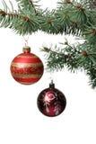 Het stuk speelgoed van Kerstmis op een tak van een bont-boom Royalty-vrije Stock Fotografie